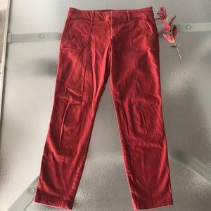 Pixie Cropped Pant in Rust